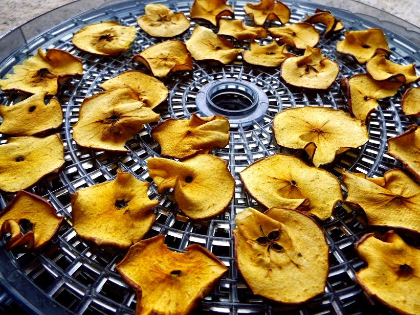 Arrange apples in your dehydrator and time appropriately so you get the perfect crunch, or chewiness.